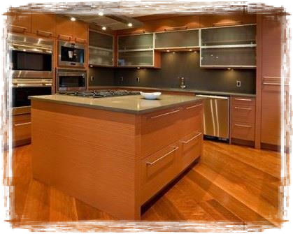 Kitchen Remodeling Contractor Tampa FL l Custom Kitchen Cabinets l